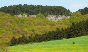 Felswand bei Berdorf, Luxemburg